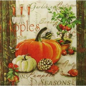 Ambiente オランダ ペーパーナプキン 秋のガーデニング Autumn Gardening 13312410 バラ売り2枚1セット デコパージュ ドリパージュ|ccpopo