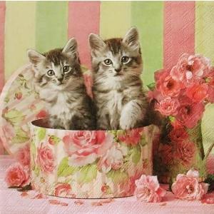 Ambiente オランダ ペーパーナプキン キャット イン ボックス 猫 Cats in Box 13312890 バラ売り2枚1セット デコパージュ ドリパージュ ccpopo