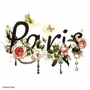 Ambiente オランダ ペーパーナプキン パリ Paris 13313045 バラ売り2枚1セット デコパージュ ドリパージュ|ccpopo