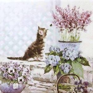 1枚バラ売り25cmペーパーナプキン Ambiente オランダ 猫 Kitten 12509990 紙コースター デコパージュ ドリパージュ ccpopo