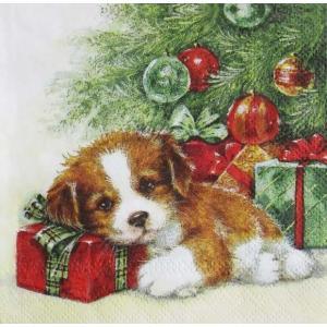 1枚バラ売り25cmペーパーナプキン Ambiente オランダ プレゼントを抱きかかえる犬 GIFT GUARD 32511895 紙コースター デコパージュ ドリパージュ|ccpopo