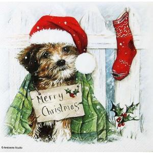 Ambiente オランダ ペーパーナプキン クリスマス Christmas Puppy バラ売り2枚1セット 33311075 デコパージュ ドリパージュ|ccpopo