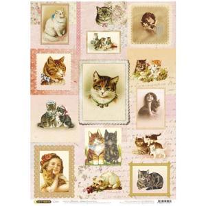 ロシア 露 クラフトプレミア Craft Premier 作品販売可デコパージュ用ライスペーパー A4 「愛する猫」 25g/m CP01470-1 正規輸入品|ccpopo
