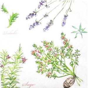 Daisy ポーランド ペーパーナプキン Lunch napkins ハーブ herbs SDOG-005801 バラ売り2枚1セット デコパージュ ドリパージュ|ccpopo