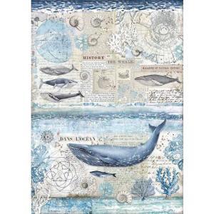 スタンペリア Stamperia イタリア デコパージュ用ライスペーパー A3 29.7cmX42cm Rice paper クジラ 鯨 海 壁紙 History of the whale DFSA3077 ccpopo