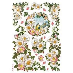 スタンペリア Stamperia イタリア デコパージュ用ライスペーパー Rice paper A4 ワイルドローズ バラ 薔薇 花 鳥 Papaveri DFSA4177|ccpopo