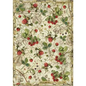 スタンペリア Stamperia イタリア デコパージュ用ライスペーパー Rice paper A4 森のラズベリー Forest raspberry DFSA4429 2020春|ccpopo