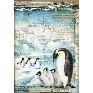 スタンペリア Stamperia デコパージュ用ライスペーパー Rice paper ペンギン Penguins DFSA4479 2020秋冬|ccpopo