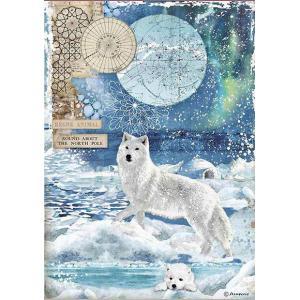 スタンペリア Stamperia デコパージュ用ライスペーパー Rice paper A4 狼 オオカミ Wolf DFSA4480 2020秋冬|ccpopo