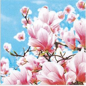 かわいいペーパーナプキン Blooming Magnolia 2枚 211411 デコパージュ ドリパージュ ccpopo