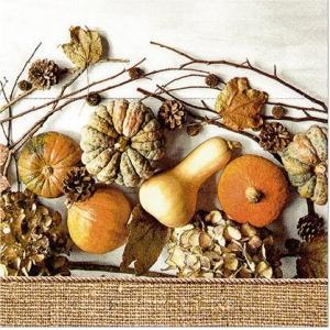 かわいいペーパーナプキン Muddle of Pumpkin カボチャの賑わい 2枚 211629 デコパージュ ccpopo