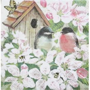 Home Fashion ドイツ ペーパーナプキン Birds and Blossom 211716 バラ売り2枚1セット デコパージュ ドリパージュ|ccpopo