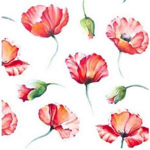 1枚バラ売り25cmペーパーナプキン HOME FASHION ドイツ Poppy Drawing 111548 紙コースター デコパージュ ドリパージュ|ccpopo