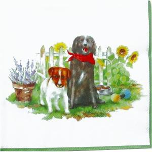 IHR ドイツ ペーパーナプキン 仲良しな犬達 HELLO DOGS white バラ売り2枚1セット L-779390 デコパージュ ドリパージュ|ccpopo