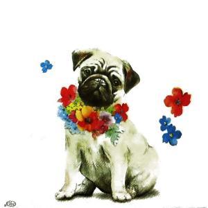 IHR ドイツ ペーパーナプキン ドイツ アルフレッド 犬 パグ ALFRED バラ売り2枚1セット L-807100 デコパージュ ドリパージュ ccpopo