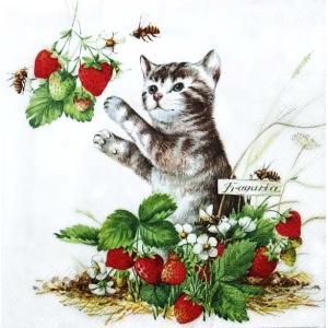 IHR ドイツ ペーパーナプキン ドイツ いちごと戯れる猫 イチゴ ネコ キャット KITTY AND STRAWBERRIES バラ売り2枚1セット L-809000 デコパージュ ドリパージュ|ccpopo