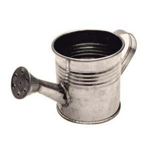 スタンペリア Stamperia イタリア クラフト用ジョウロ 缶 Metal watering canKM86 13.0x6.5cm|ccpopo