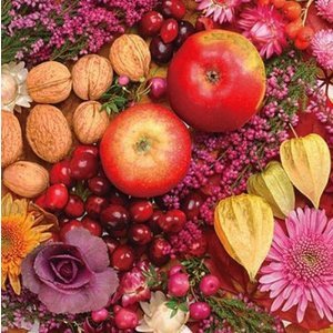Maki ポーランド ペーパーナプキン 秋の果物 Herbstfruchte バラ売り2枚1セット SLOG-026601 デコパージュ ドリパージュ|ccpopo