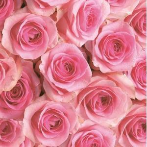 Maki ポーランド ペーパーナプキン Rosen rosa/pink バラ売り2枚1セット SLOG-028801 デコパージュ ドリパージュ|ccpopo