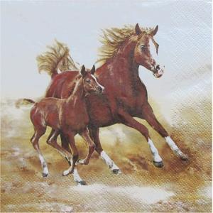 Maki ポーランド ペーパーナプキン 仲良く走る馬のカップル Mare with Foal バラ売り2枚1セット SLOG-032801  デコパージュ ccpopo