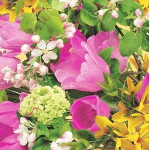 Maki ポーランド ペーパーナプキン Spring Bouquet バラ売り2枚1セット SLWI-003001 デコパージュ ドリパージュ|ccpopo