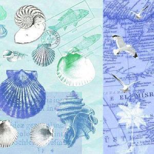 nouveau オーストリア ペーパーナプキン アンティークシェル Antique Shells 74275 バラ売り2枚1セット デコパージュ ドリパージュ|ccpopo