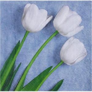 1枚バラ売りペーパーナプキン Paper+Design ドイツ 3本の白いチューリップ Three white tulips 200403 デコパージュ ドリパージュ|ccpopo