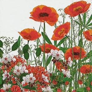 Paper+Design ドイツ ペーパーナプキン 赤色に花咲く牧草地 Red meadow バラ売り2枚1セット L-200032 デコパージュ ドリパージュ|ccpopo