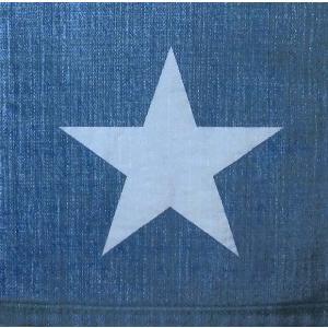 Paper+Design ドイツ ペーパーナプキン ジーンズ Jeans バラ売り2枚1セット L-200108 デコパージュ ドリパージュ|ccpopo