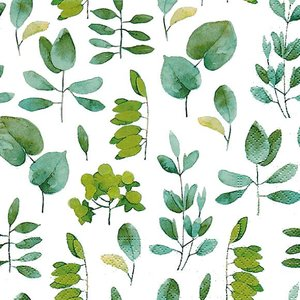 ドイツ製ペーパーナプキン Lunch napkins 新緑 葉 リーフ柄 Fresh leaves バラ売り2枚1セット L-200445|ccpopo