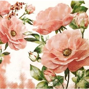 Paper+Design ドイツ ペーパーナプキン ローズガーデン 薔薇 花 Rose garden バラ売り2枚1セット L-200609 デコパージュ ドリパージュ|ccpopo