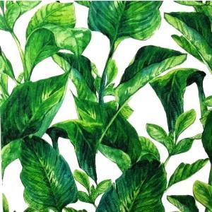 Paper+Design ドイツ ペーパーナプキン エキゾチックリーフ 葉 熱帯 南国 Exotic leaves バラ売り2枚1セット L-200618 デコパージュ ドリパージュ|ccpopo