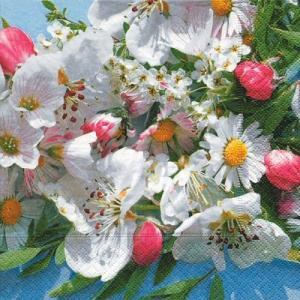 ドイツ製ペーパーナプキン The beauty of spring バラ売り2枚1セット L-21914 デコパージュ ドリパージュ|ccpopo