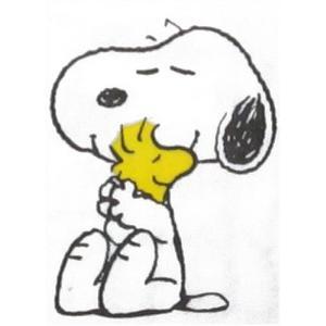 入手困難レア品 PEANUTS スヌーピーとハグウッドストック ポケットペーパーナプキン 紙ナフキン 紙ハンカチ 21.5cm角 2枚1セット デコパージュ ドリパージュ|ccpopo