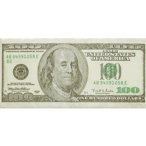 sniff ドイツ ポケットペーパーナプキン 紙ナフキン 紙ハンカチ 100ドル紙幣 100 Dollar 21cm角 2枚1セット|ccpopo