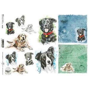 作品販売可能 ポーランド デコパージュ用ライスペーパー Rice paper A4 R1563 犬 ドッグ イースター アンティーク パーツ モチーフ|ccpopo