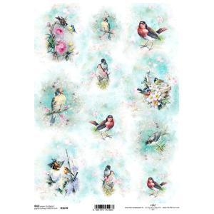 作品販売可能 ポーランド デコパージュ用ライスペーパー Rice paper A4 R1670 花と小鳥 パーツ モチーフ|ccpopo