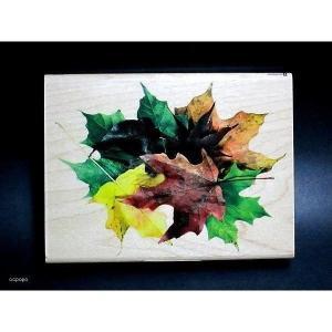 INKADINKADO USA 大判木製ラバースタンプ 紅葉柄|ccpopo