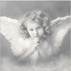 Sagen Vintage Design ノルウェー ペーパーナプキン Angel Prayer 2089 バラ売り2枚1セット デコパージュ ドリパージュ|ccpopo