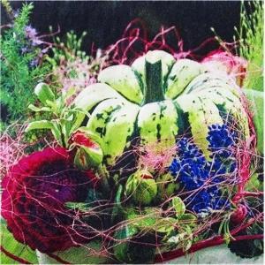 2枚1セット ソストレーネ グレーネ Sostrene Grene カボチャ かぼちゃ 南瓜 P172112 33cm×33cm バラ売りペーパーナプキン デコパージュ|ccpopo