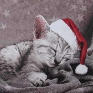 Stewo スティーボ社 スイス ペーパーナプキン 猫 キャット Mimi grau バラ売り2枚1セット L-72-6616-65 デコパージュ ドリパージュ ccpopo