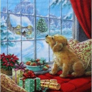 ti-flair ドイツ製ペーパーナプキン 窓辺で雪景色を眺める子犬 Puppy on Window Seat 310719 バラ売り2枚1セット デコパージュ ccpopo