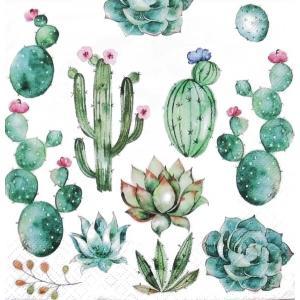 ti-flair ドイツ製ペーパーナプキン サボテンと多肉植物 Cactus & Succulents 340157 バラ売り2枚1セット デコパージュ ドリパージュ|ccpopo