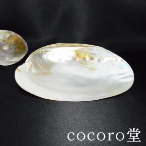 パワーストーン パールシェル プレート 天然貝殻 パール付 セージ香皿 天然石|ccr