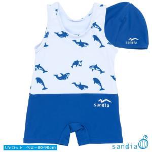 ベビーグレコ水着。元気な男の子のベビースイミングに最適。新柄シャチが仲良く輪になって泳いでいるプリン...