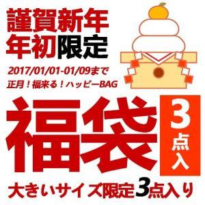 3点入り 大きいサイズ レディース 福袋2017 送料無料 あすつく|celeb-honey