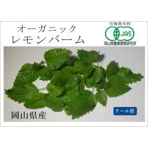 オーガニック(有機) レモンバーム スムージー・野菜ジュース・サラダに最適ハーブ(4月〜11月販売)