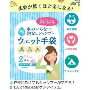 送料無料【水のいらない泡なしシャンプー ウェット手袋2枚入り(1袋)】防災 アウトドア 備蓄  シャンプー celife