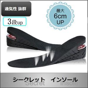 シークレット インソール 靴 中敷き かかと 上げ底 ヒール