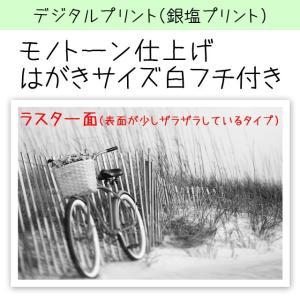 デジタルプリント(銀塩仕上げ) カラー写真を白黒風に仕上げます 印画紙サイズ:はがきサイズ(15.2...